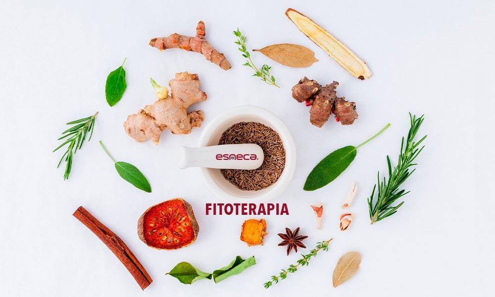 Guida alla Fitoterapia