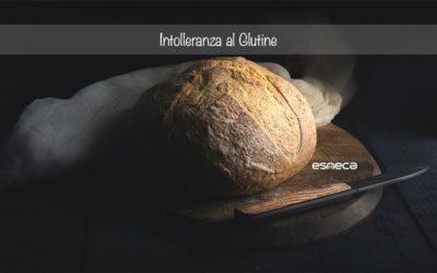 Tutto quello che devi sapere sull'intolleranza al glutine