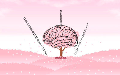 Guida alla Programmazione Neuro Linguistica